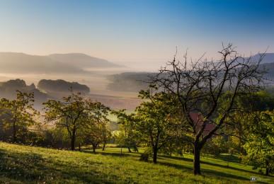Frühmorgens in der Fränkischen