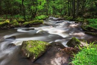 Aschatal, Oberpfälzer Wald