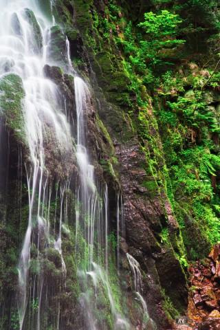 Burgbacher Wasserfall, Schwarzwald